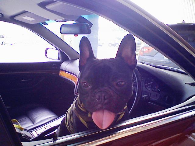 ネェちゃん、オレの車乗ってく?