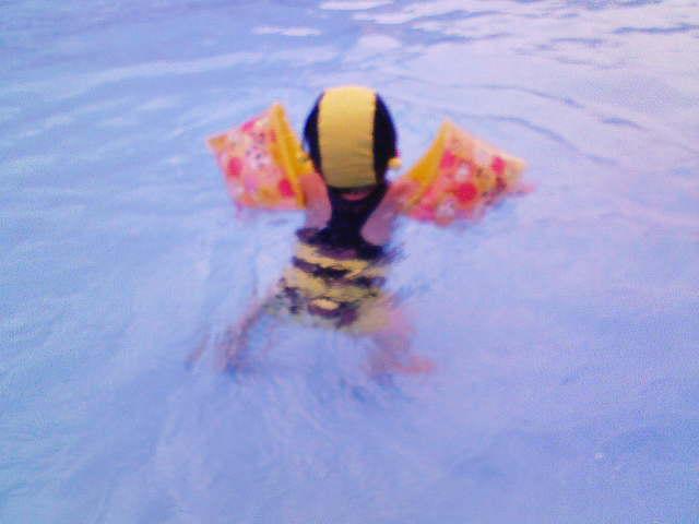 ハッチは泳ぐ!